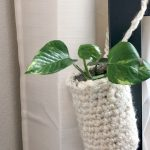 Reuse, Recycle, Root – FREE crochet plant hanger pattern and tutorial